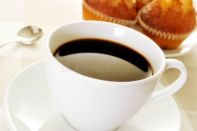 Kaffe och magdalenas, typisk spanjor plattar till muffin royaltyfria foton