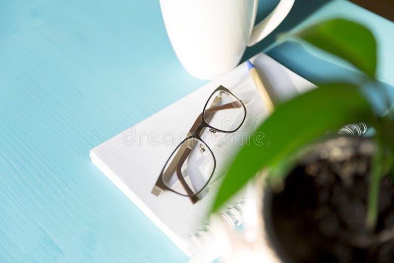 Kaffeanteckningsbok, växt och glases på en blå trätabell på en su fotografering för bildbyråer