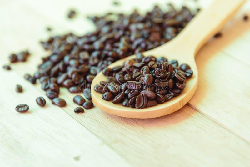 Kaffeböna på träsleven royaltyfria foton