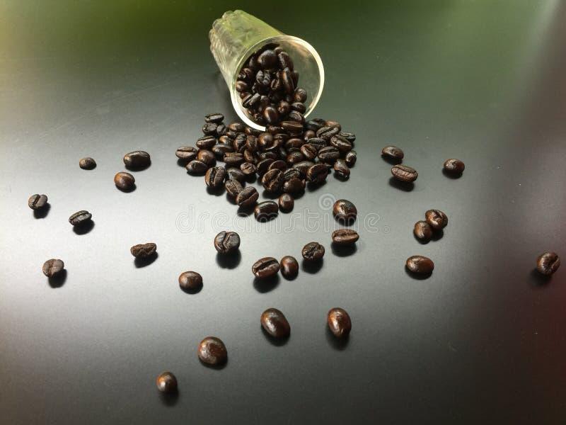 Kaffebönan faller ner från exponeringsglas royaltyfria foton