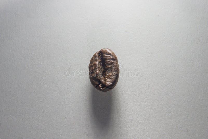 Kaffebönan ligger på kornigt papper arkivbild