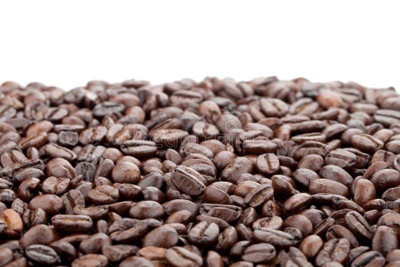 Kaffebönor royaltyfria bilder