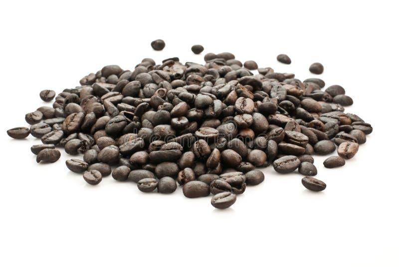 Kaffebönor royaltyfria foton