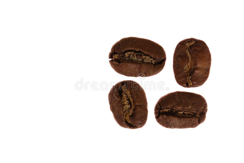 4 kaffebönor arkivbilder