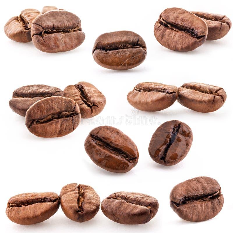 Kaffebönor, closeup arkivbild
