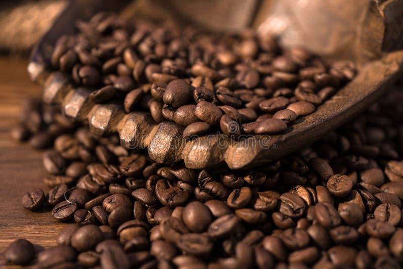 Kaffebönor, händer royaltyfri fotografi