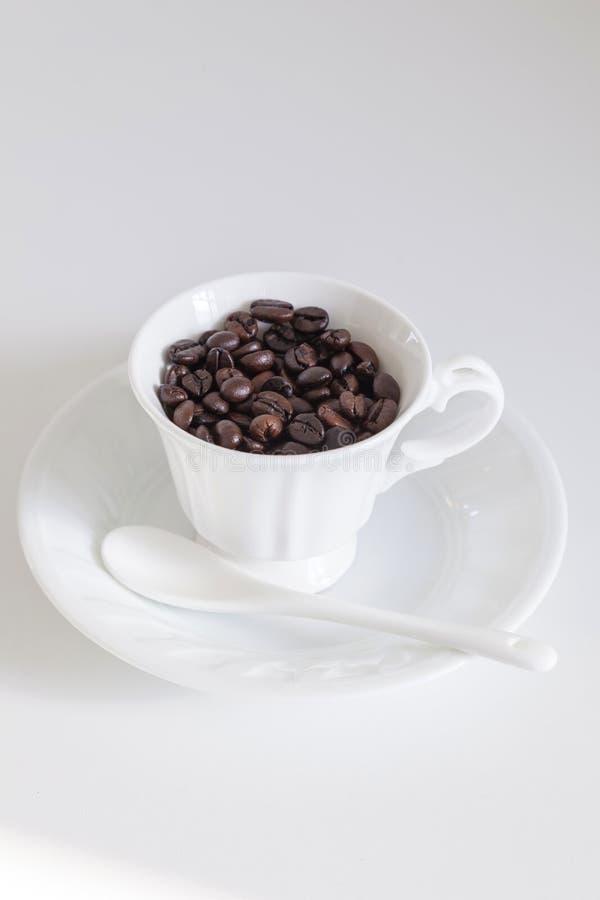 Kaffebönor i kopp på vit bakgrund royaltyfria foton