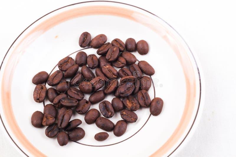 Kaffebönor i mini- platta Isolerat på vit royaltyfri bild