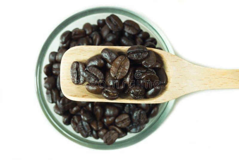 Kaffebönor i träsked royaltyfri bild