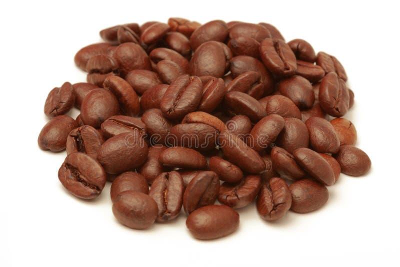 Kaffebönor isolerade på vit bakgrund arkivbild