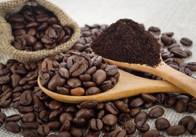 Kaffebönor, kaffepulver royaltyfri bild