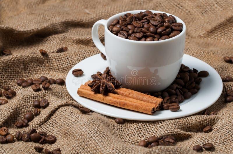 Kaffebönor, kanel och anis i kaffekopp royaltyfri foto