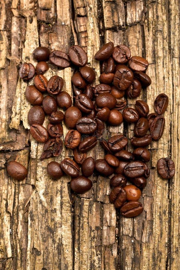 Kaffebönor - korn traver bönor för detaljbakgrundsflyget arkivfoton