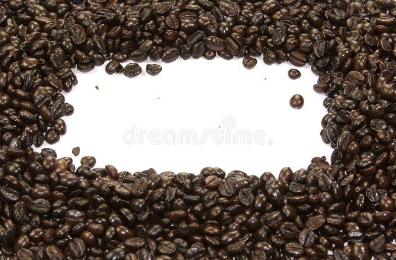 Kaffebönor och vit bakgrund royaltyfria foton