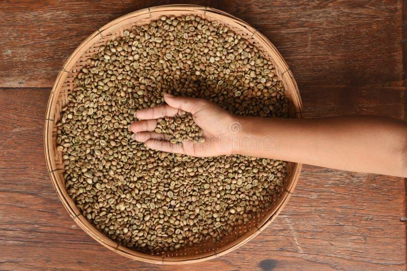 Kaffebönor på handen arkivfoto