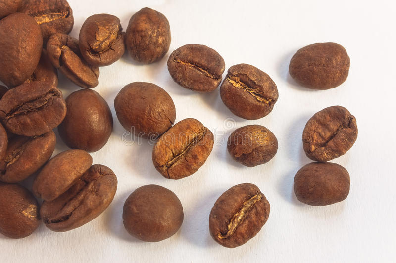Kaffebönor på ljus bakgrund Överkant av sikten arkivfoton