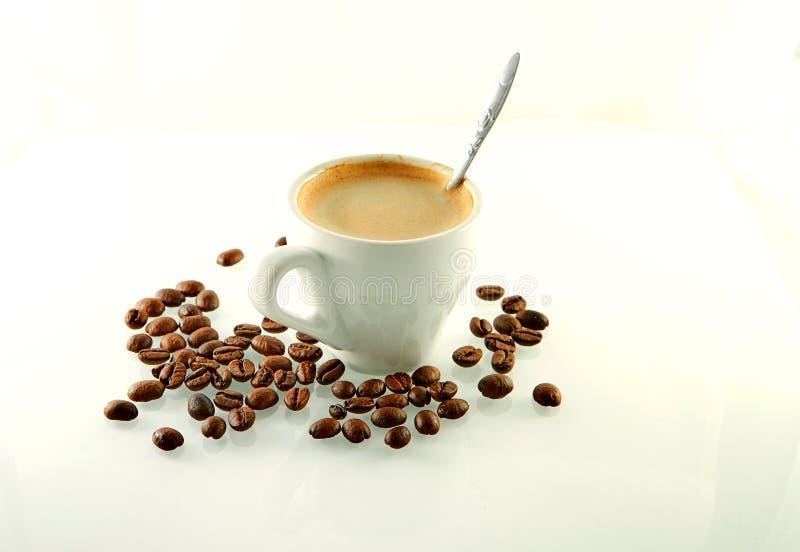 Kaffebönor runt om en kaffekopp med espressokaffe på ett vitt arkivfoto