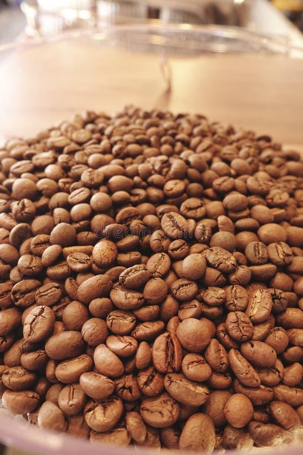Kaffeb?nor i kaffegrinder arkivfoton