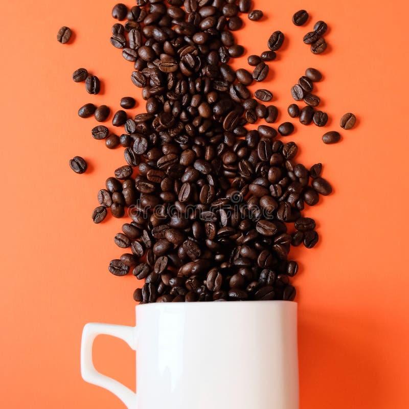 Kaffeb?nor i kaffekoppen som isoleras p? vit royaltyfri bild