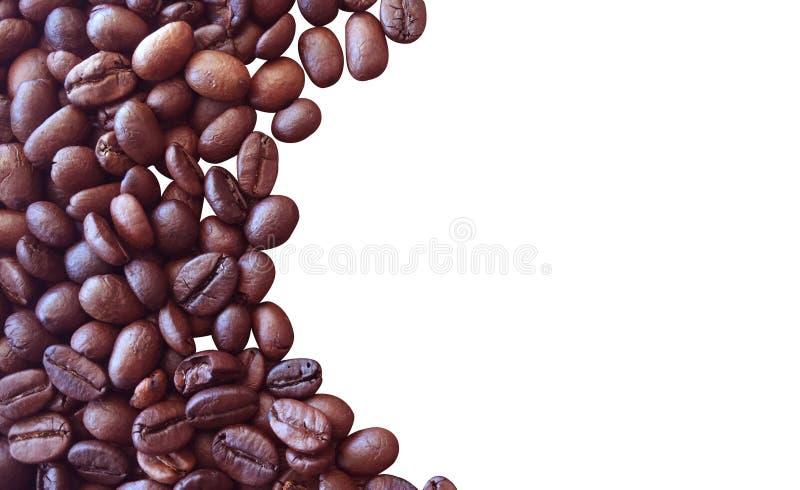 Kaffeb?nor som isoleras p? vit bakgrund f?r grafisk design royaltyfri foto
