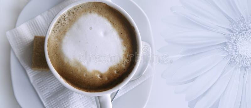 Kaffecappuccino i en vit kopp på en vitt servett och tefat Ställe för text med en stor gerberablomma Top beskådar royaltyfri bild