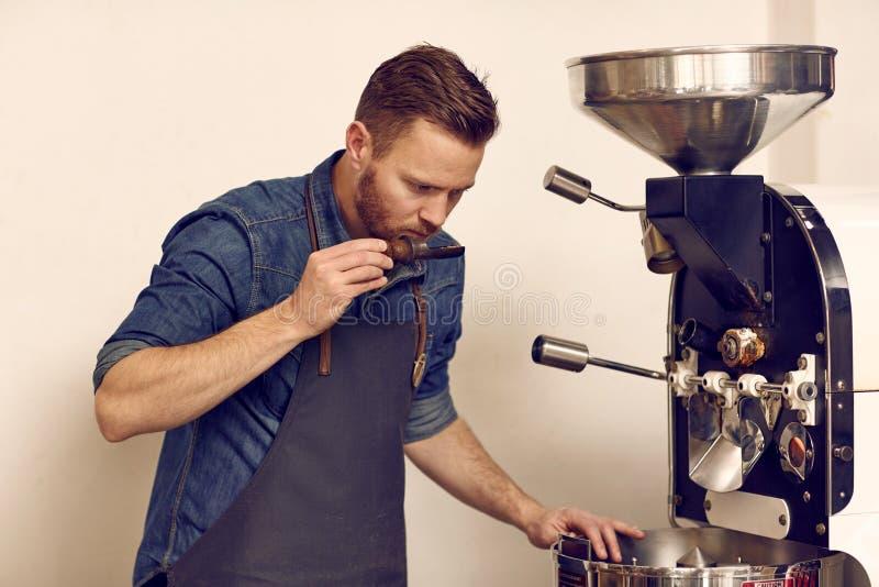 Kaffeconnoiseur som kontrollerar nytt grillade bönor för full arom royaltyfri bild
