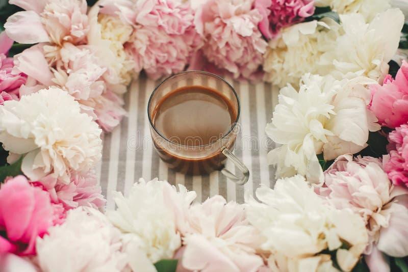 Kaffedrink i exponeringsglaskopp i härlig rosa och vit pionram Hälsningar fjädrar Begrepp för bra morgon lyckliga mödrar för dag royaltyfria bilder
