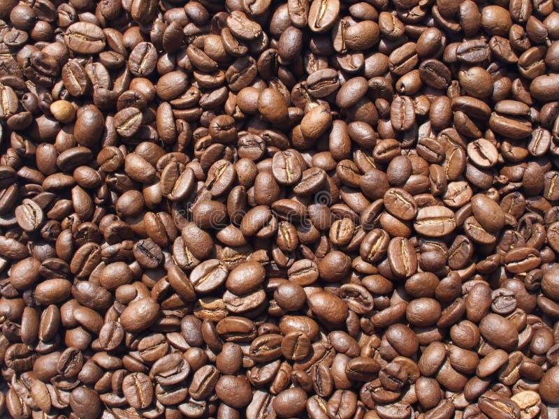 Kaffee-Bohnen Hintergrund lizenzfreies stockbild
