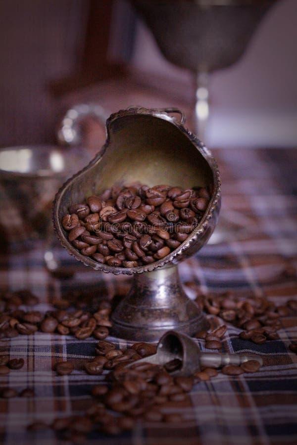 Kaffee in den Körnern stockfotografie