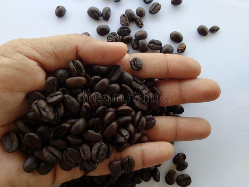 Kaffee in meiner Hand lizenzfreie stockfotografie