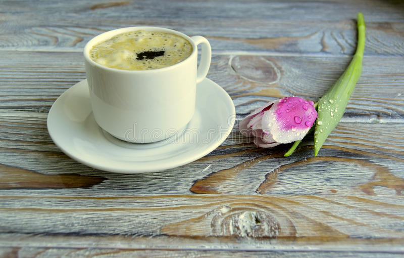 Kaffee und Tulpe stockbild