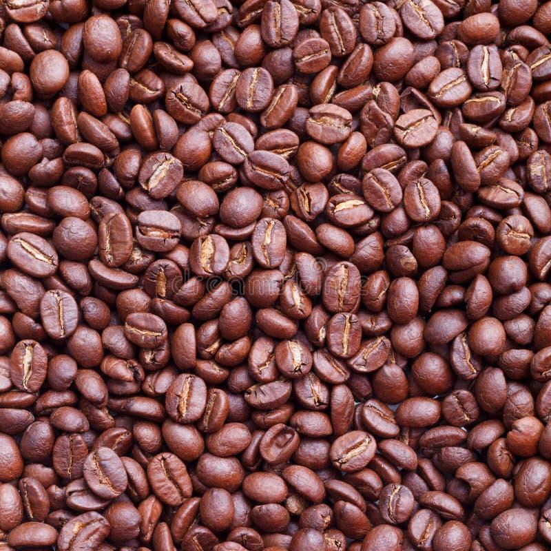 Kaffeebohne-Beschaffenheitshintergrund stockfotografie
