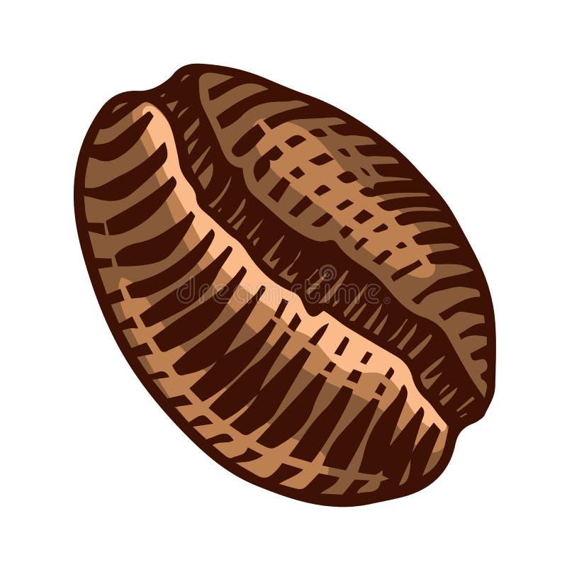 Kaffeebohne in der Weinleseart Handgezogene gravierte Retro- Skizze für Aufkleber Bestandteil für die Herstellung des Cappuccinos stock abbildung