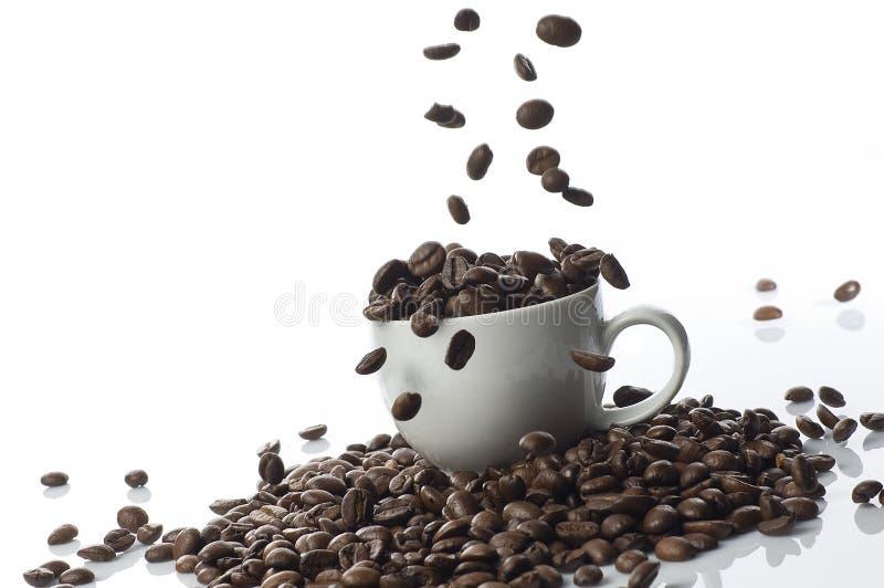 Kaffeebohne-Fallen lizenzfreie stockbilder