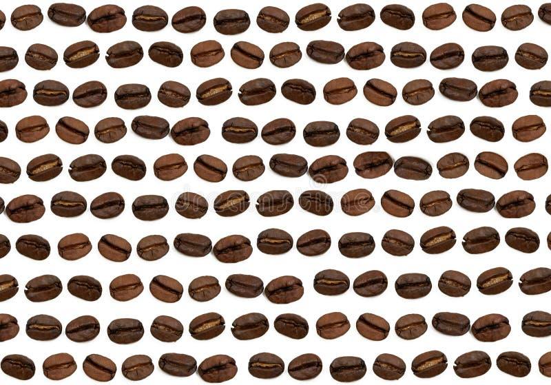 Kaffeebohne-Hintergrund stockfoto