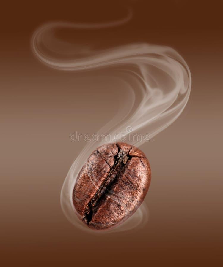 Kaffeebohne mit heißer Dampfnahaufnahme stockfotos