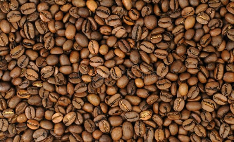 Kaffeebohnehintergrund stockfotografie