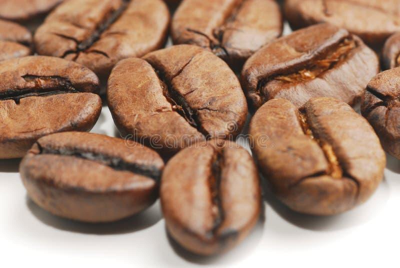 Kaffeebohnen 3 stockbild