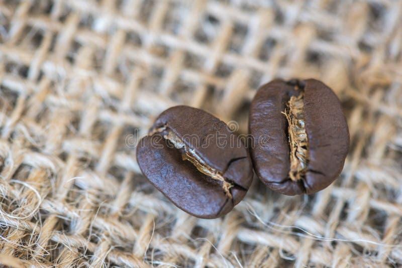 Kaffeebohnen auf dem Sack stockfoto