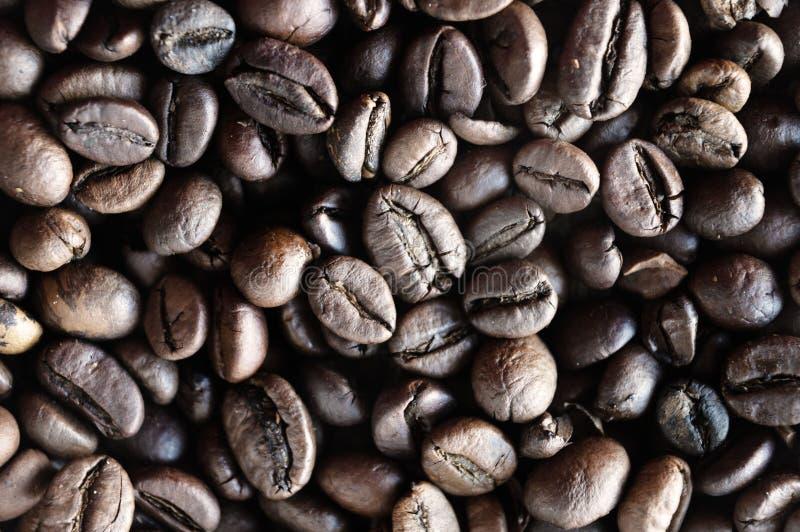Kaffeebohnen auf Schreibtisch stockbild