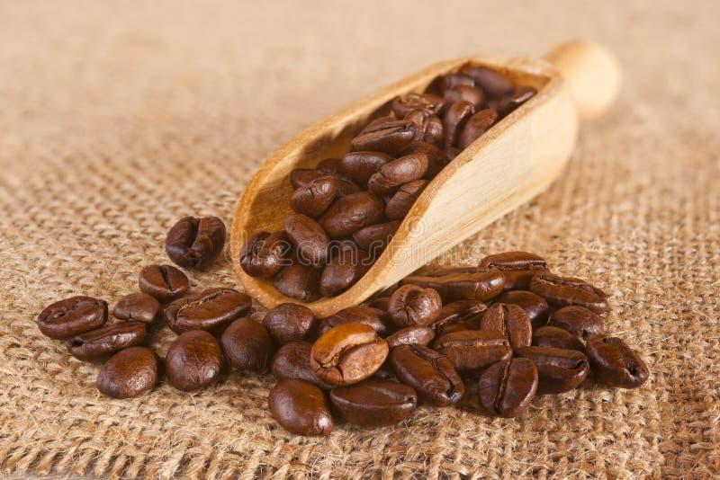 Kaffeebohnen, die eine Schaufel überlaufen stockfotografie
