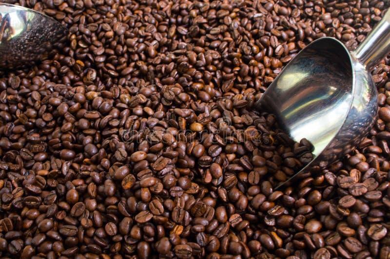 Kaffeebohnen für Verkauf stockfotografie
