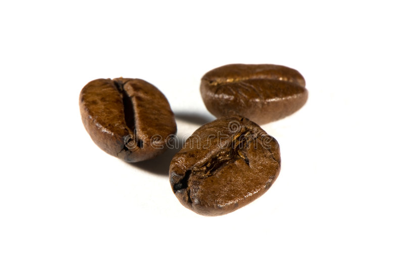 Kaffeebohnen getrennt auf Weiß stockbilder