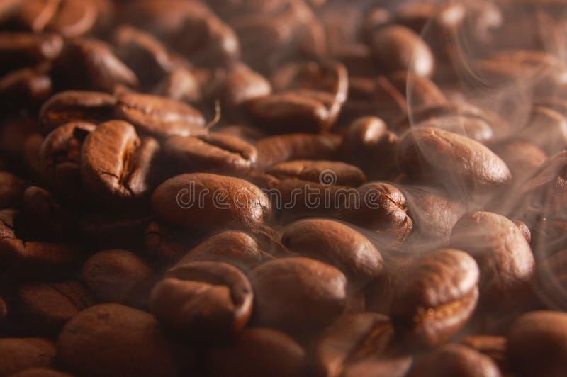 Kaffeebohnen mit Dampf stockbilder