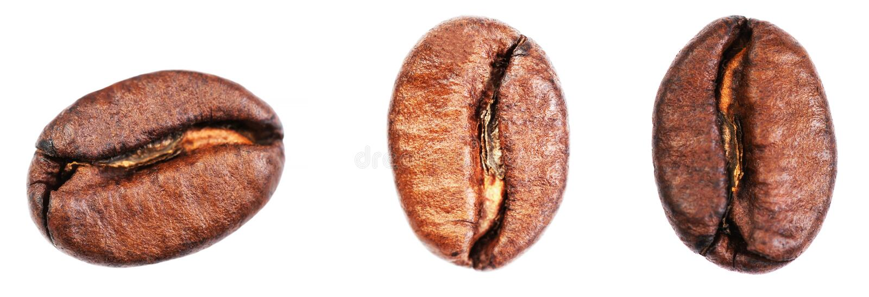 Kaffeebohnen stellten lokalisiert auf weißem Hintergrund, die Nahaufnahme ein, extrem stockfotos