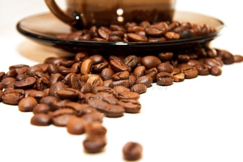 Kaffeebohnen um ein Cup mit Saucer auf Weiß stockfoto