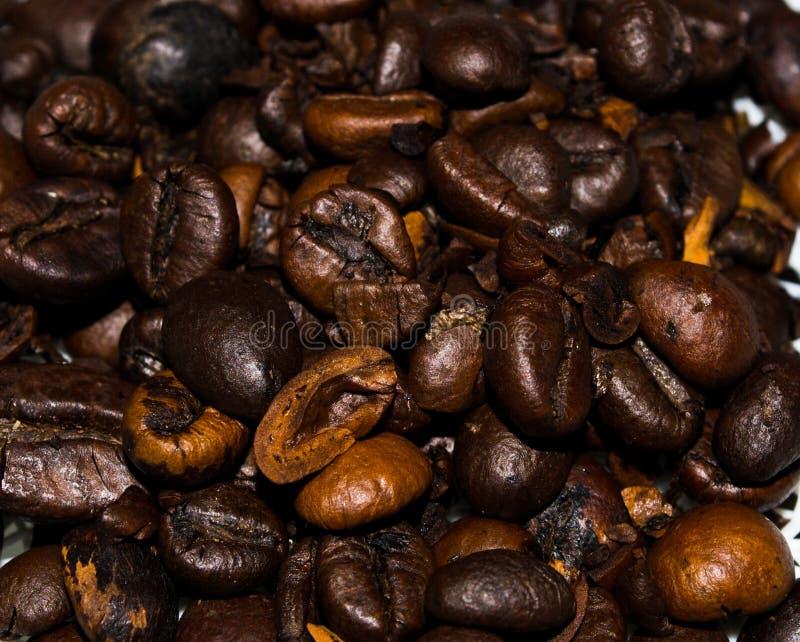 Kaffeebohnen und Anis und Schokolade, Cardamon, Zimt, Zucker stockbild