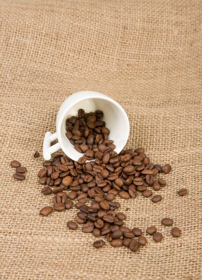 Kaffeebohnen und Cup lizenzfreie stockfotografie