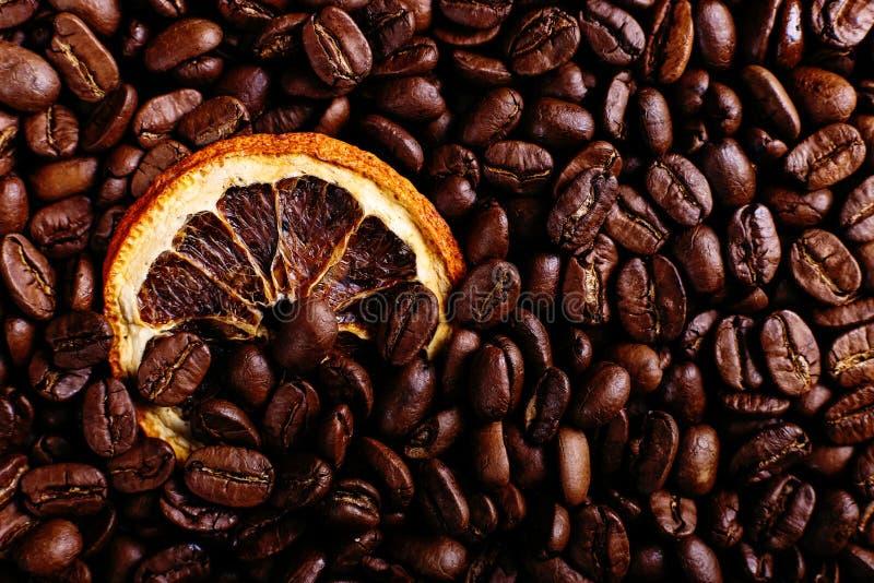 Kaffeebohnen und getrocknete Orange auf dem Küchentisch Wohlriechende Gewürze für Kaffeegetränk, Nahaufnahme lizenzfreie stockbilder