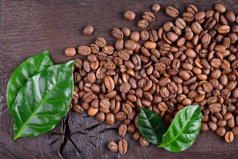 Kaffeebohnen und grüne Blätter der Kaffeeanlage auf einem alten hölzernen Schreibtisch Beschneidungspfad eingeschlossen Rustikale lizenzfreie stockfotografie